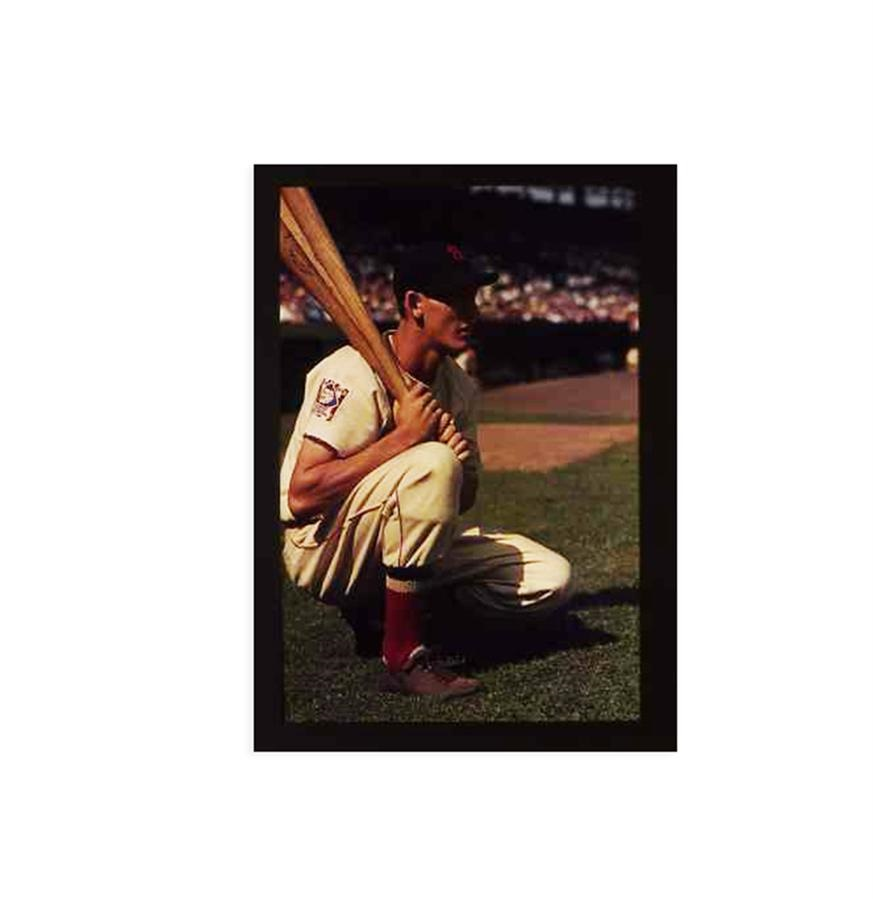 The Ted Williams Family Collection - Summer 2015 Catalog Auction